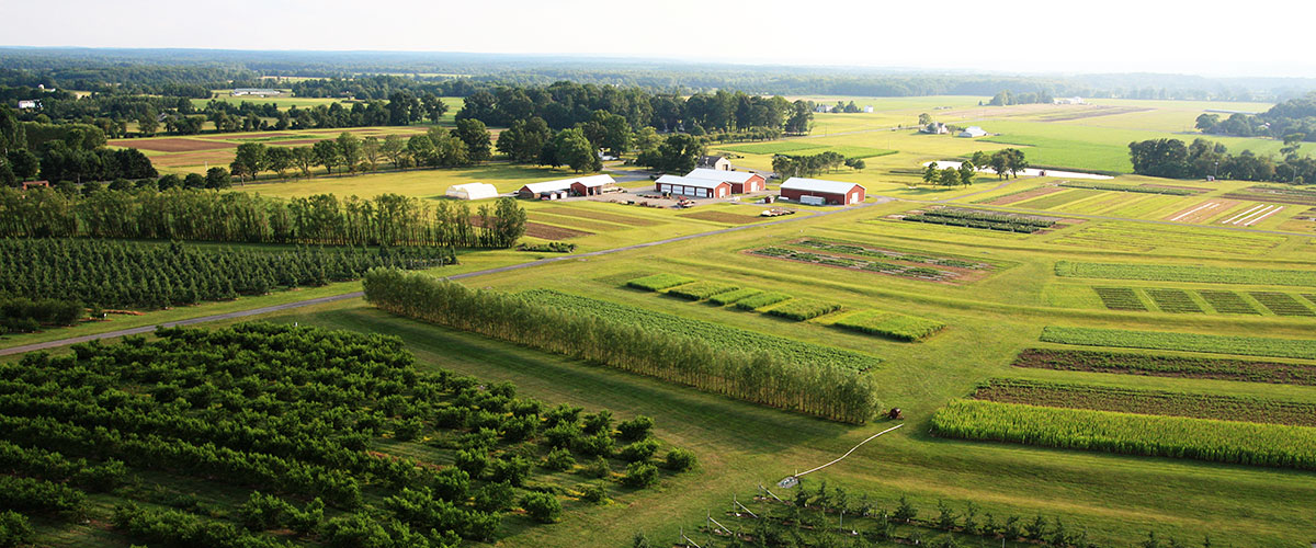 Aerial view of Snyder Farm.